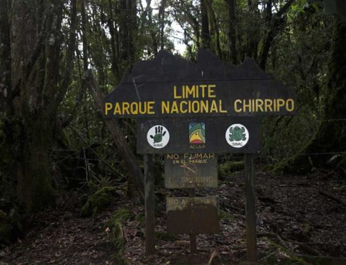 Chirripo through San Jeronimo 4 days / 3 nights