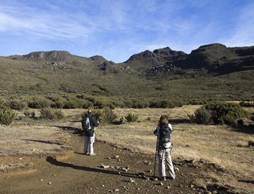 Cerro Chirripó Tour