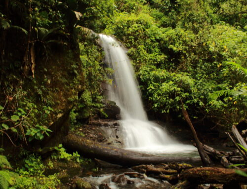 Kilo Waterfalls One Day Tour